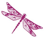 Nelsen-Painting-Firefly-transparent